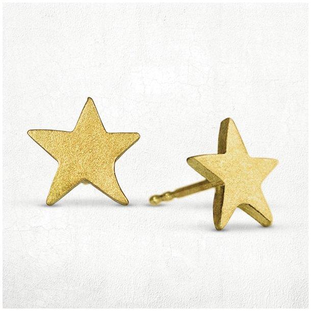 Stjerne ørestikker